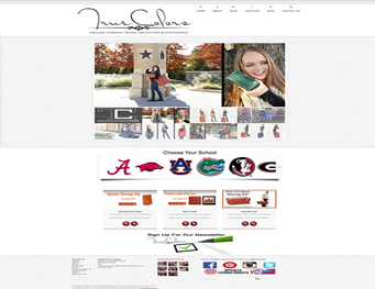 True Colors Premium Leather Visual Solutions WordPress Web Design